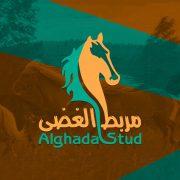 1564055643_alghada-stud
