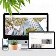 1565155543_silverline-consultancy-firm
